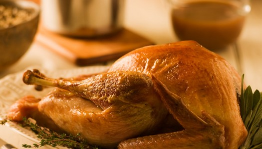 Brined Holiday Turkey with Herb Gravy