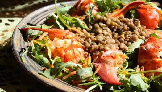 Lobster Lentil Arugula Salad