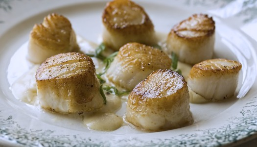 Pan-Seared Scallops with House Wine Sauce